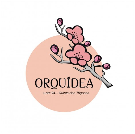 Logotipo Ed. Orquidea – Santarém